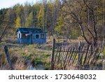 Abandoned Garden Plots In The...