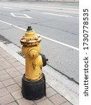 Yellow Small Fireplug On The...