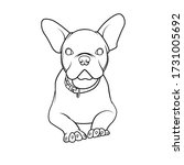 cute bulldog line drawing for... | Shutterstock .eps vector #1731005692