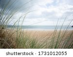 Beachside Seascape Framed By...