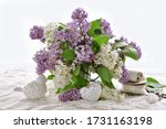 Bunch Of White And Purple Lilac ...