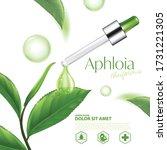 aphloia theiformis  malagasy...   Shutterstock .eps vector #1731221305