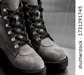 a pair of shoes  close photo on ...   Shutterstock . vector #1731291745