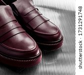 a pair of shoes  close photo on ...   Shutterstock . vector #1731291748