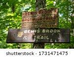 Signage On Bemis Brook Trail On ...