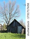 Wooden Barn And Big Tree In...