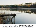 Fishing Rod On A Bridge On Pond ...