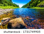 Summer Forest River Water Rock. ...