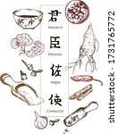 chinese medicine  herbs and...   Shutterstock .eps vector #1731765772