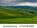 Spring Landscape Of Fields...