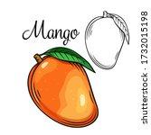 mango vector drawing icon. hand ... | Shutterstock .eps vector #1732015198