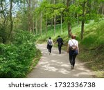 A Group Of Young Hikers  Walk...