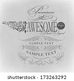 calligraphic design elements | Shutterstock .eps vector #173263292