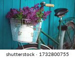 Spring In The Village. Bicycle...