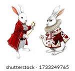 Alice In Wonderland Rabbit...