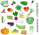 colorful fresh vegetables set... | Shutterstock . vector #1733307815