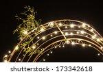 mistletoe and light in the night   Shutterstock . vector #173342618