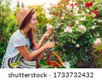 Woman Gathering Flowers In...