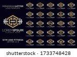 letter a z monogram logo gym...   Shutterstock .eps vector #1733748428