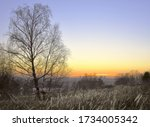 Sunset With Leaning Birch And...