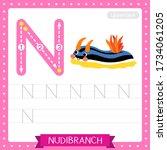 Letter N Uppercase Cute...