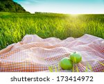 picnic outdoors | Shutterstock . vector #173414972