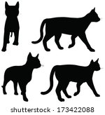 Stock vector eps vector collection of cats silhouettes 173422088