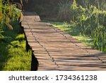 Wooden Walkway In A Marshland