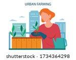 urban farming or gardening... | Shutterstock .eps vector #1734364298