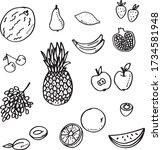 fruits vector set hand drawing   Shutterstock .eps vector #1734581948