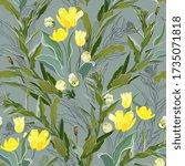 Inflorescences Of Yellow Tulip...