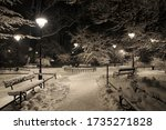 Night View Of Planty Park In...