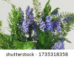 blue bells wild flowers bouquet ... | Shutterstock . vector #1735318358