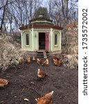 Chickens In Front Of Fancy...