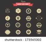 hipster lables  badges and... | Shutterstock .eps vector #173565302