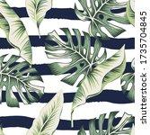 tropical green banana  monstera ... | Shutterstock .eps vector #1735704845