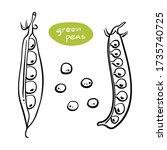 green peas in pods. black line... | Shutterstock .eps vector #1735740725