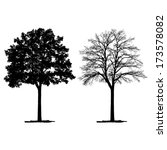 vector drawing of the tree  ... | Shutterstock .eps vector #173578082