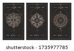 vector set of three dark...   Shutterstock .eps vector #1735977785