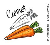 carrot vector drawing icon.... | Shutterstock .eps vector #1736039462