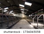 An Empty Cattle Feeding Shed....