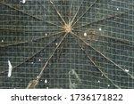 Cracked Window Pane  Detail  Of ...