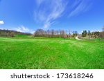 glade with blue sky and green... | Shutterstock . vector #173618246