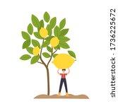 organic production cartoon... | Shutterstock .eps vector #1736225672