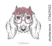 Hand drawn fashion portrait of dachshund isolated on white - stock vector