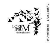 a flock of flying silhouette... | Shutterstock .eps vector #1736358542