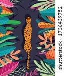 cute exotic wild big cat... | Shutterstock .eps vector #1736439752