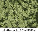 Green Camo Tie Dye Background