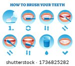 how to brush your teeth vector... | Shutterstock .eps vector #1736825282