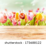 Dreamy Spring Background Of...